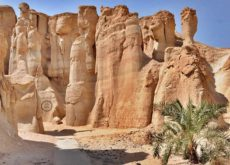 Saudi Arabia plans mega tourism project in Al Ahsa region
