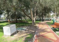 Abu Dhabi municipality plans parks construction and upgrades
