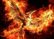Dubai Parks and Resorts to install two Hunger Games-themed rides