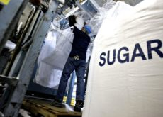 Egypt's Al Nouran to build largest sugar plant worth US$ 360 mn