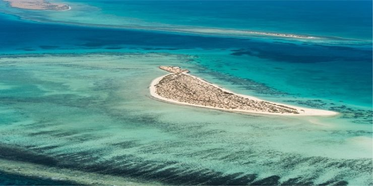 Pre-construction work starts on The Red Sea Project