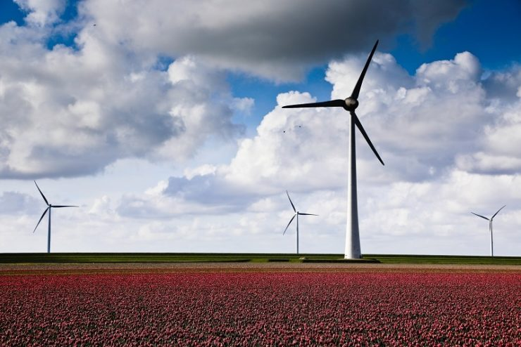 Construction begins on 140MW Oyster Bay wind farm in South Africa
